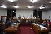 Parlamentares se reúnem em comissões